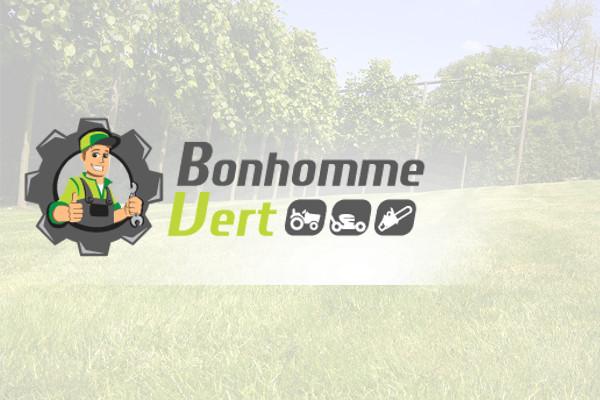 Bonhomme Vert