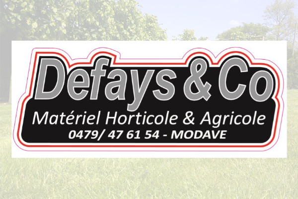 Defays & Co